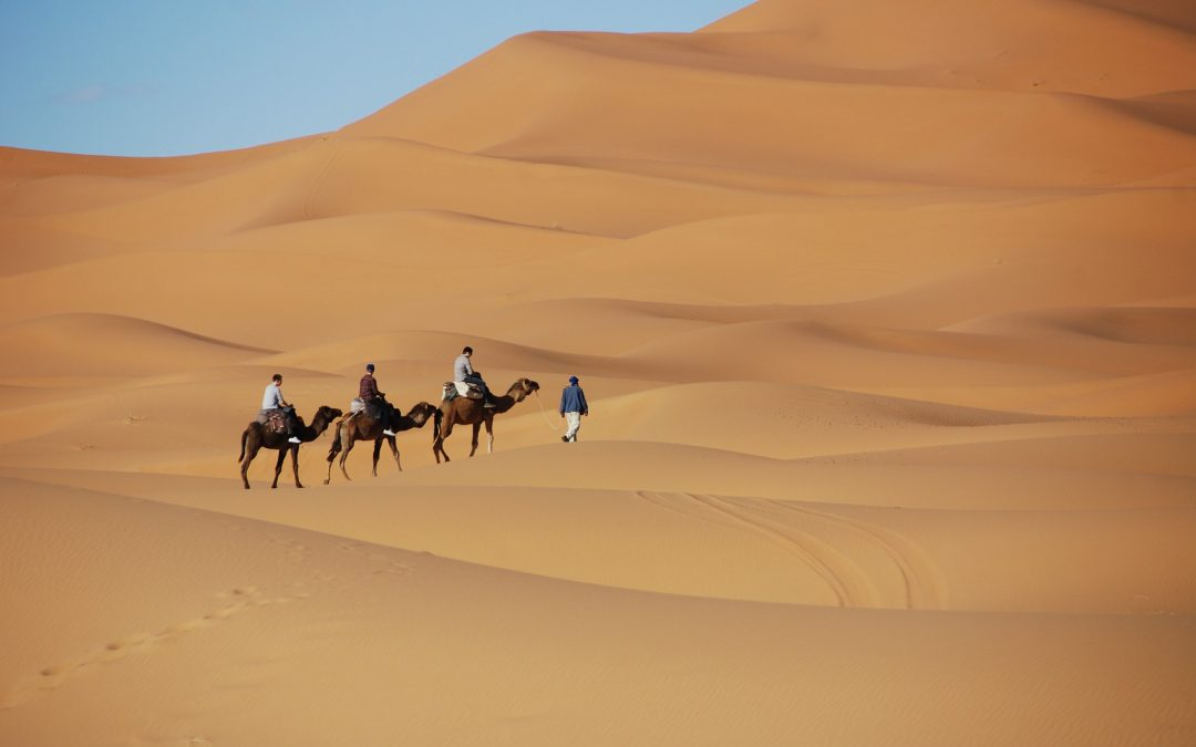 3 day tour: Dunes and Oasis