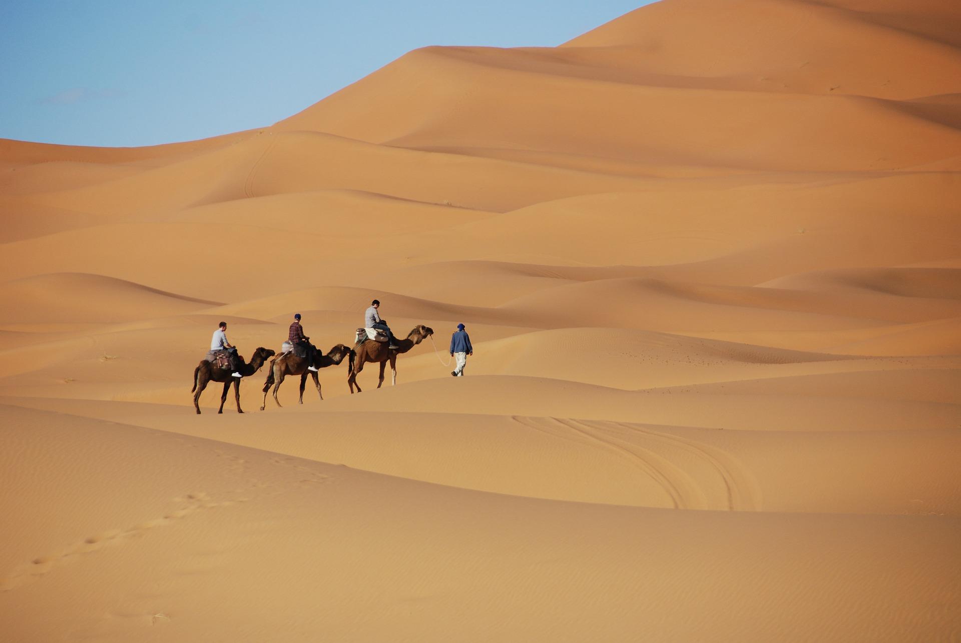 desert-1914052_1920 (1)