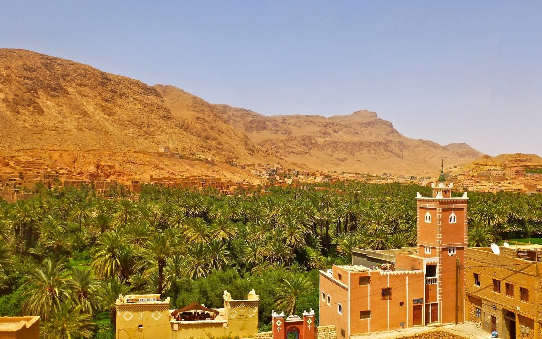 One day tour: Journey on Draa Valley